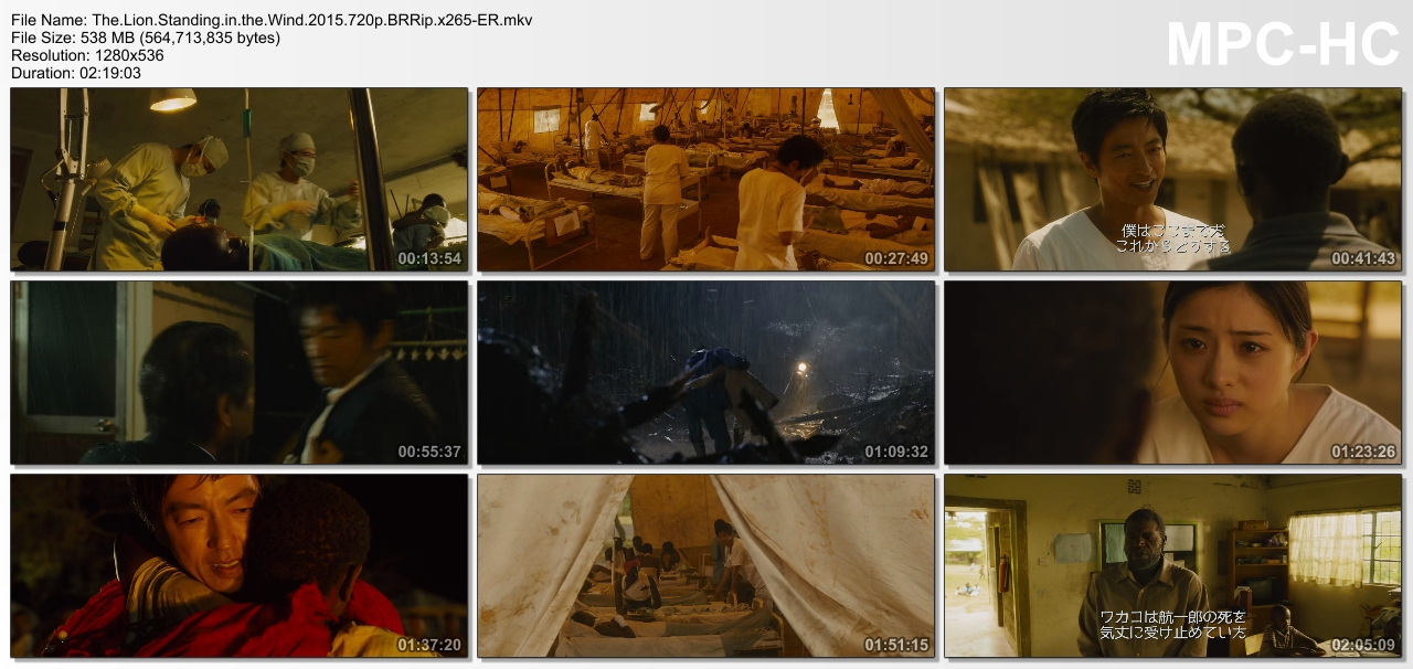 The.Lion.Standing.in.the.Wind.2015.720p.BRRip.x265-ER.mkv_thumbs_[2015.10.09_07.33.07].jpg