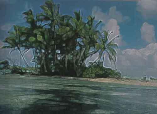 palmyraatollano1.jpg