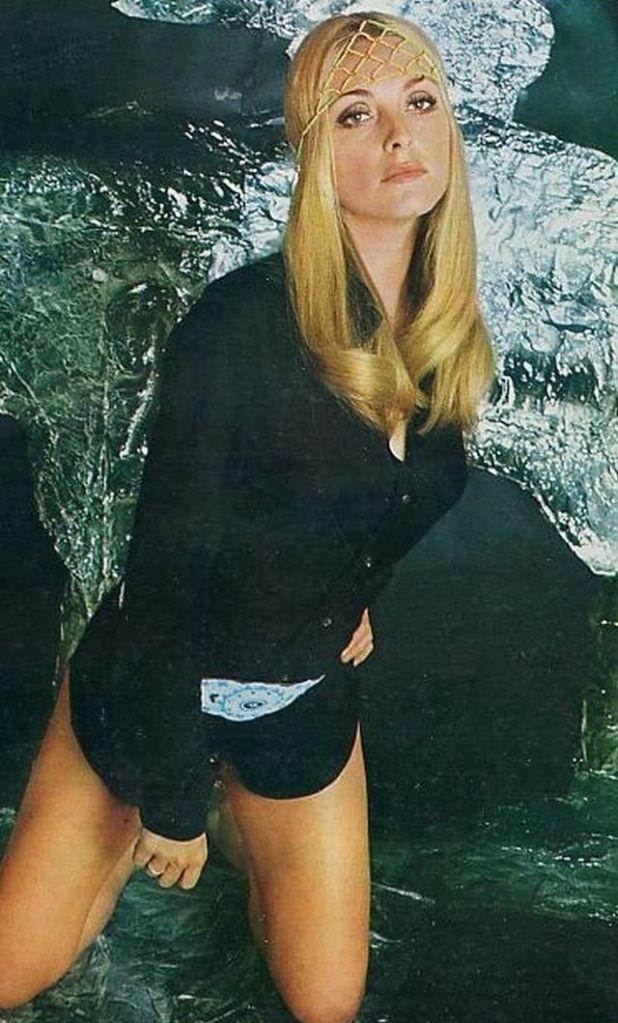 Sharon 1.jpg