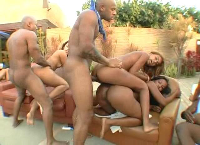 DP Ele, Lola, Lorena Aquino, Nicole, Sandrinha, Sumaya, Preta Brazil - Big Bubble Butt Brazilian Org