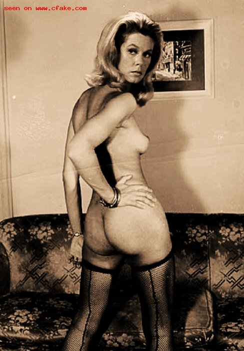 Elizabeth-Montgomery-fake_62.jpg