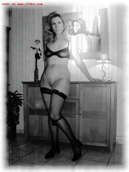 Elizabeth-Montgomery-fake_42.jpg
